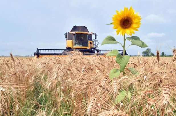 Из-за теплой зимы потери аграриев возрастут